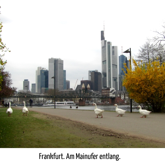 durch Frankfurt